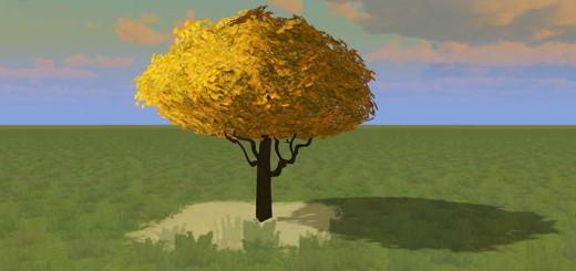 Жёлтое Дерево Гинкго